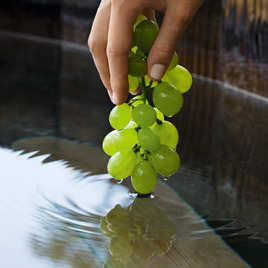 Caudalie_grapes