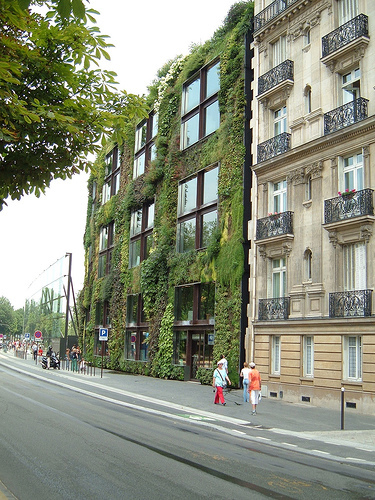 Musee_branly_living_wall