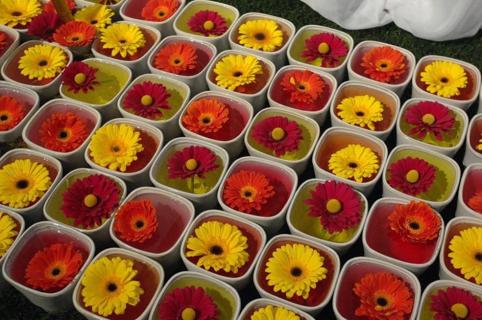 Canada_blooms_toronto_conferen